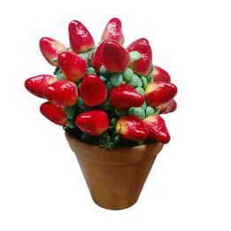 Vaso-decorativo-topiara-morango-23-x-13-cm---23760