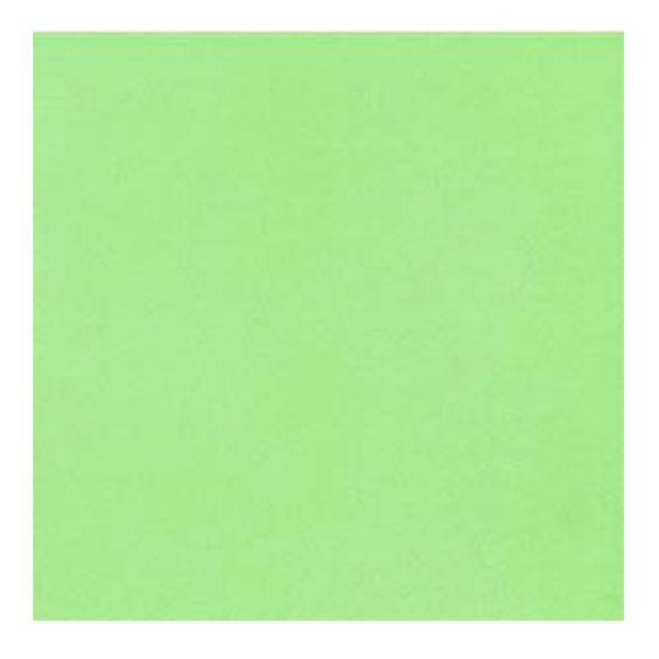 Guardanapo-de-Papel-Opal-Green-12-Unidades-40CM---29124
