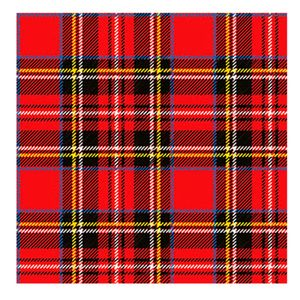 Guardanapo-de-Papel-Scottish-Red-20-Unidades-33CM---26006