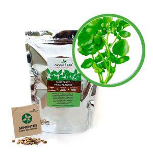 Kit-Horta-Inteligente-Green-Leaf-Agriao-Terra