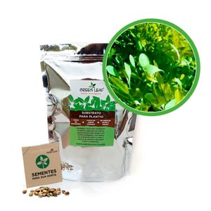 Kit-Horta-Inteligente-Green-Leaf-Alface-Microverdes