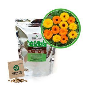 Kit-Horta-Inteligente-Green-Leaf-Calendula-Dobrada-Sortida