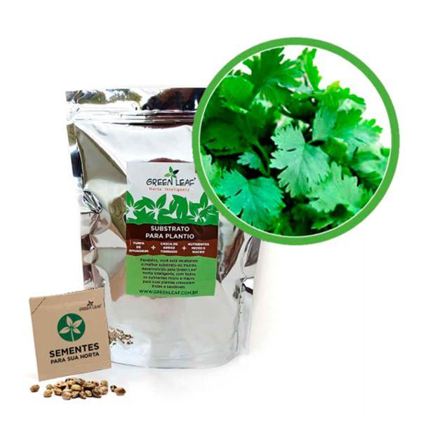 Kit-Horta-Inteligente-Green-Leaf-Coentro-Verdao