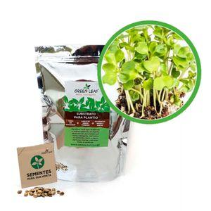 Kit-Horta-Inteligente-Green-Leaf-Couve-Mahara-Microverdes