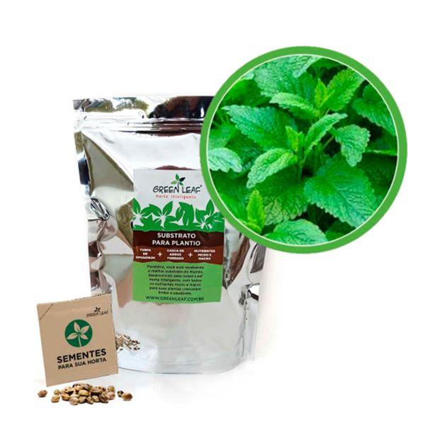 Kit-Horta-Inteligente-Green-Leaf-Erva-Cidreira