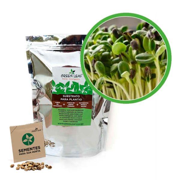Kit-Horta-Inteligente-Green-Leaf-Girassol-Anao-Jardim-Microverdes