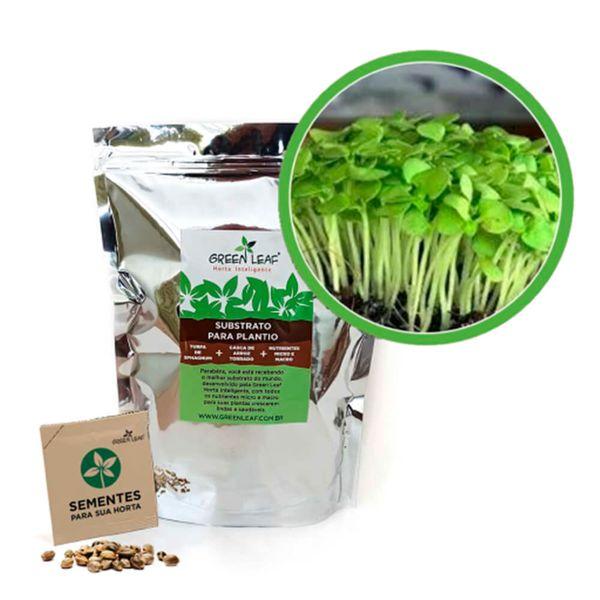 Kit-Horta-Inteligente-Green-Leaf-Mostarda-Lisa-Microverdes