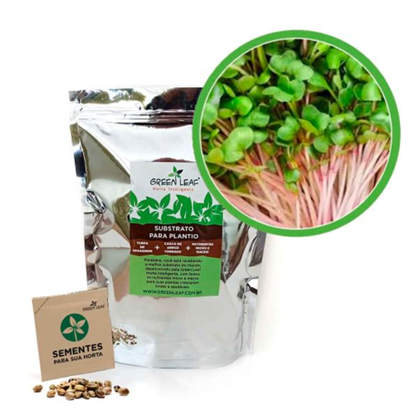Kit-Horta-Inteligente-Green-Leaf-Rabanete-Indra-Microverdes