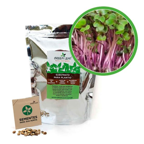 Kit-Horta-Inteligente-Green-Leaf-Repolho-Microverdes