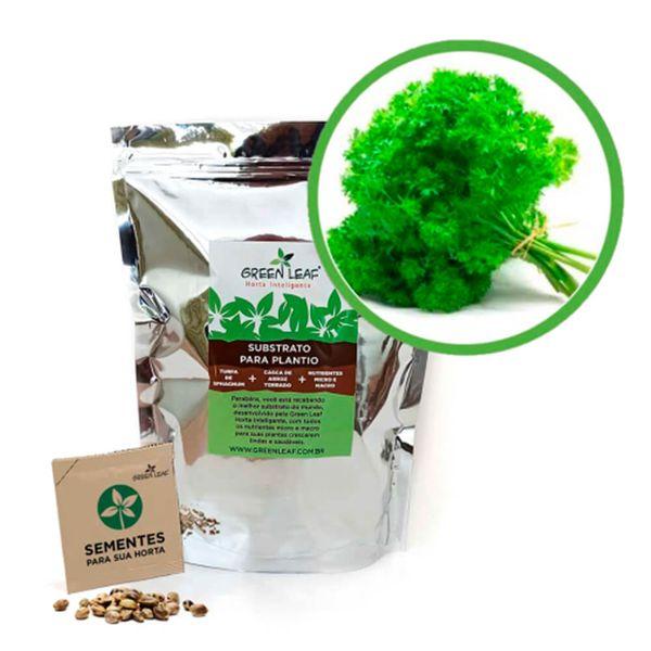Kit-Horta-Inteligente-Green-Leaf-Salsa-Crespa