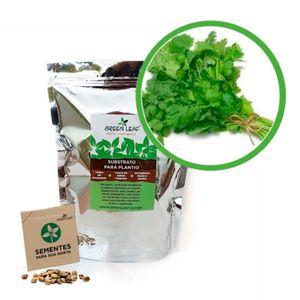 Kit-Horta-Inteligente-Green-Leaf-Salsa-Lisa