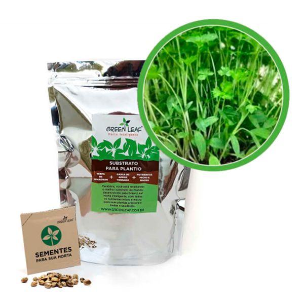 Kit-Horta-Inteligente-Green-Leaf-Salsa-Lisa-Microverdes